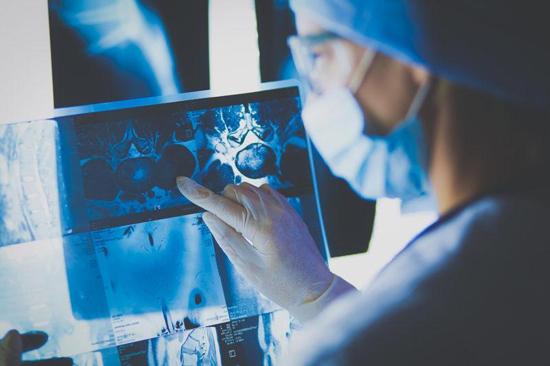 radiologia veterinaria